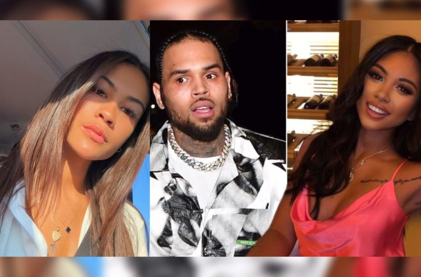Diamond Brown Was Living With Chris Brown During Ammika Harris Pregnancy and Still Is