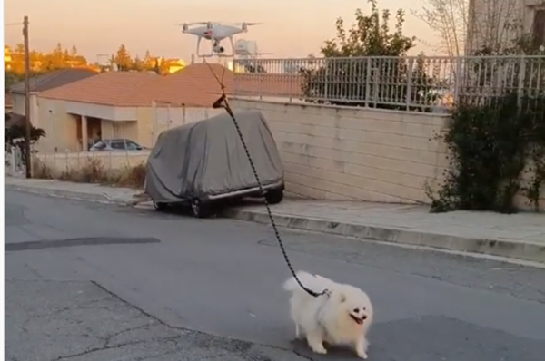 A Quarantined Man Walks His Dog With A Drone
