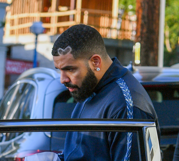 Drake Amps Up Security Since Being The Target Of Knife-Wielding Trespasser