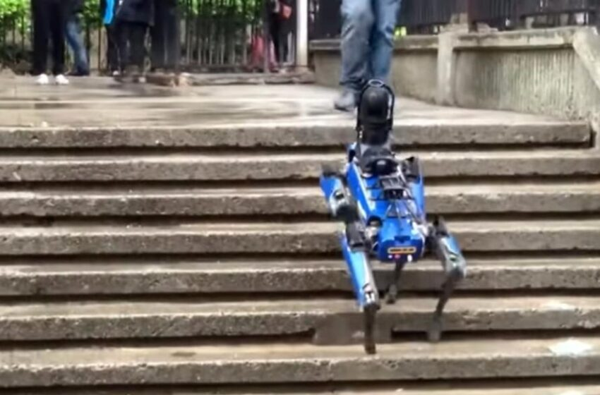 NYPD Discontinues Use of Robot Dog After People Expressed Outrage