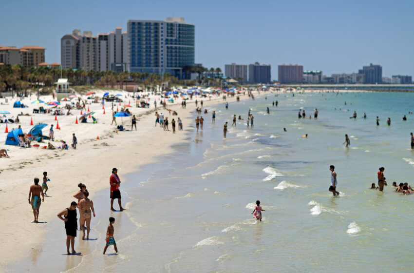 Florida's COVID-19 Death Rate Is More Than 32 States Combined: Reports