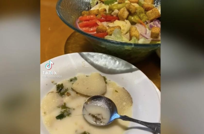 TikToker Discovers Bug Floating Around In Olive Garden Soup, Video Goes Viral