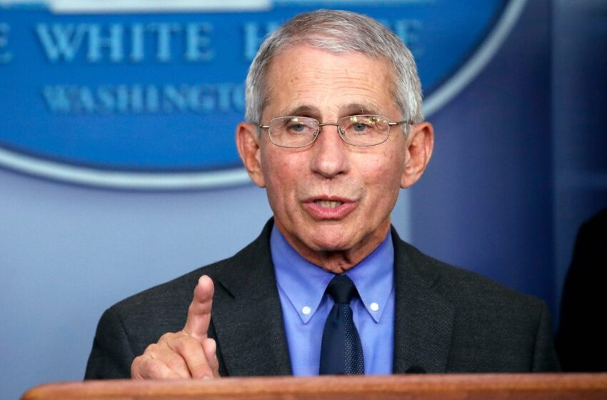 Dr. Fauci Gives The All Clear For Holiday Gatherings Amongst Families That Are Vaccinated